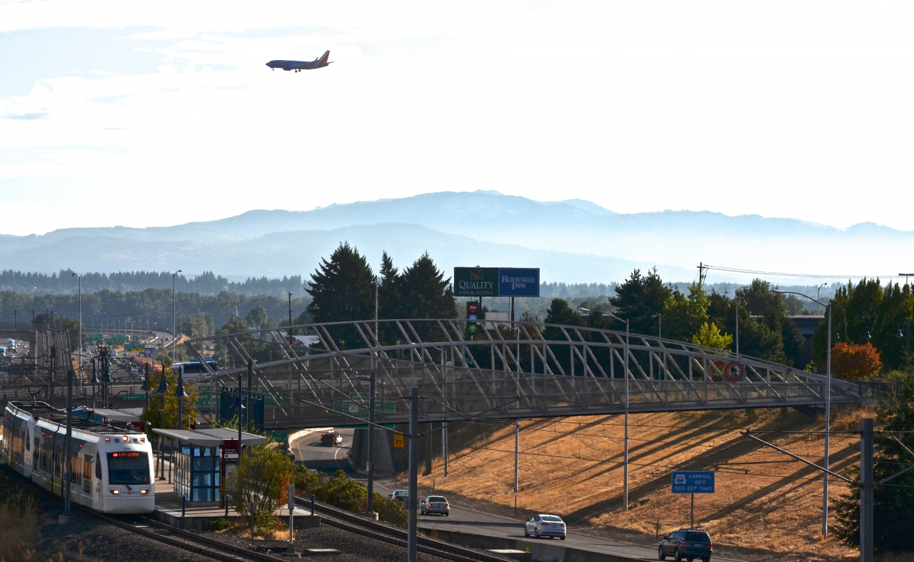 Fishbird, Portland, Oregon / image 8
