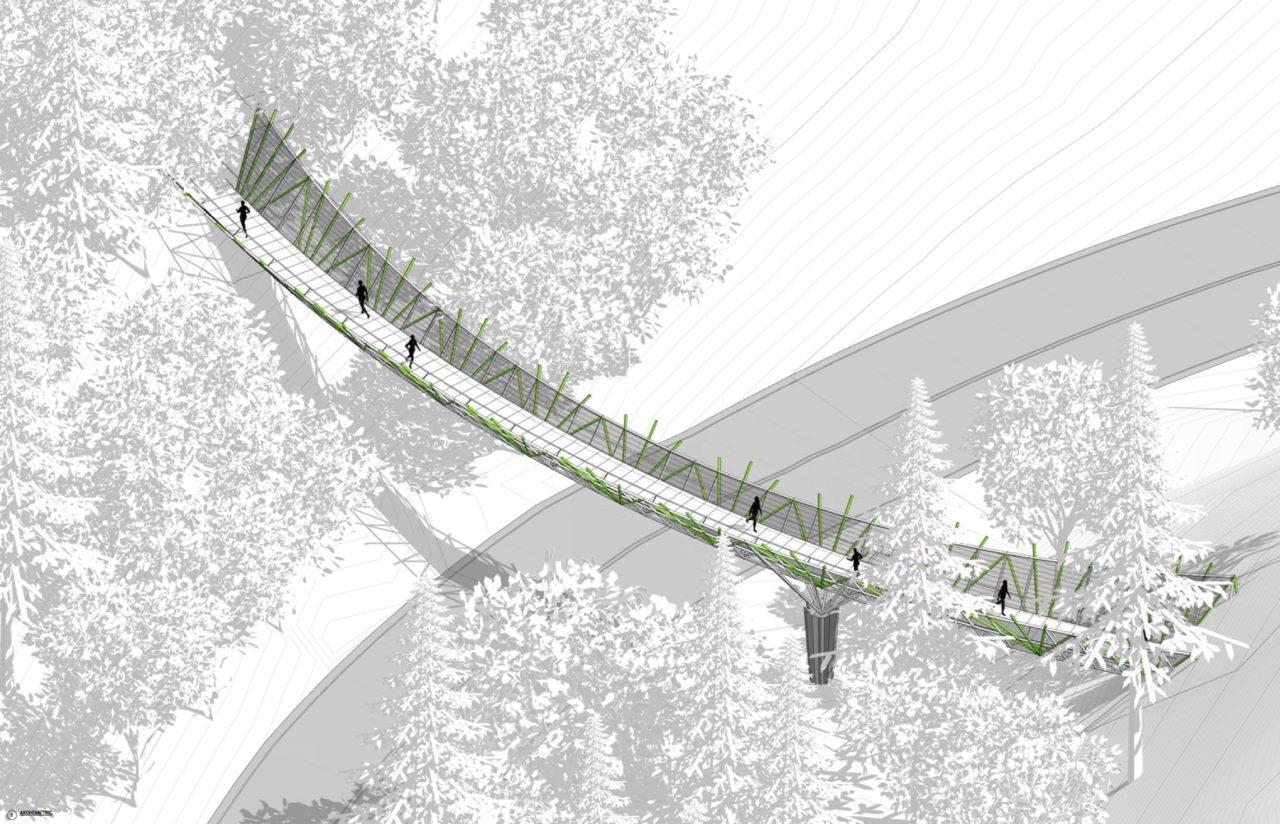 Wildwood Trail Pedestrian Bridge, Portland, Oregon / image 1